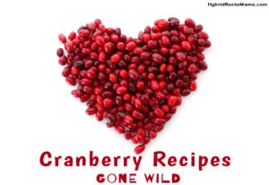 Cranberry Recipes Gone Wild