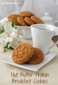 Nut Butter Protein Breakfast Cookies: HybridRastaMama.com