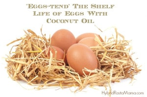 Extend the Shelf Life of Eggs With Coconut Oil: HybridRastaMama.com