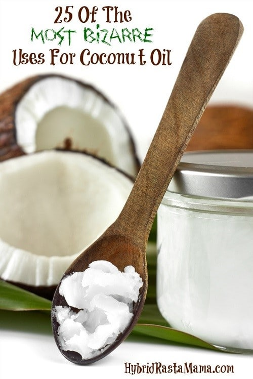 From loosening screws to dissolving grease to repelling cat poop, coconut oil can do it all. Check out these 25 Bizarre Uses For Coconut Oil from HybridRastaMama.com.