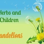 Herbs and Children – Dandelions