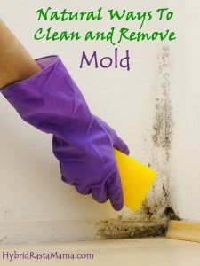 Toxic mold resources - Natural ways remove mold ...