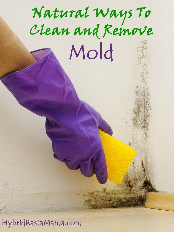 Natural Ways To Clean and Remove Mold