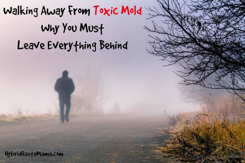 Walking Away From Toxic Mold – Why You Must Leave Everything Behind