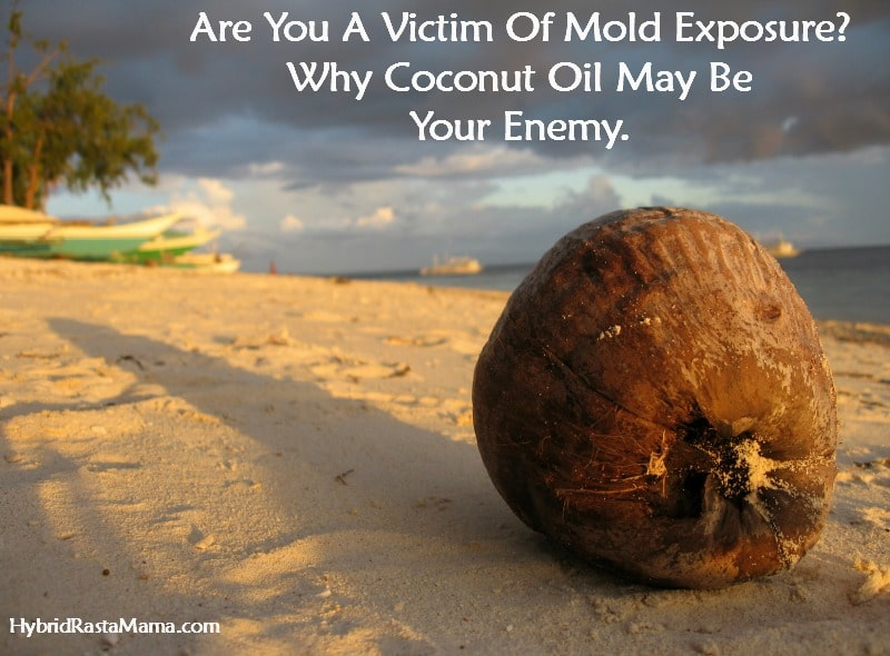 Are You A Victim Of Mold Exposure? Why Coconut Oil May Be Your Enemy.