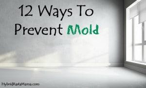 12 Ways To Prevent Toxic Mold from HybridRastaMama.com