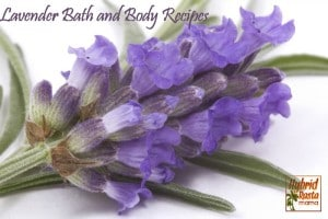 Lavender Bath and Body Recipes from HybridRastaMama.com