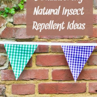 5 Buzzworthy Natural Insect Repellent Ideas