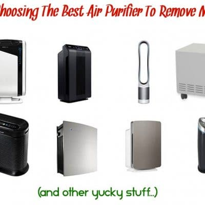 A Guide To Choosing The Best Air Purifier To Remove Mold Spores (and other yucky stuff)