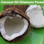 Can Coconut Oil Eliminate Parasites?