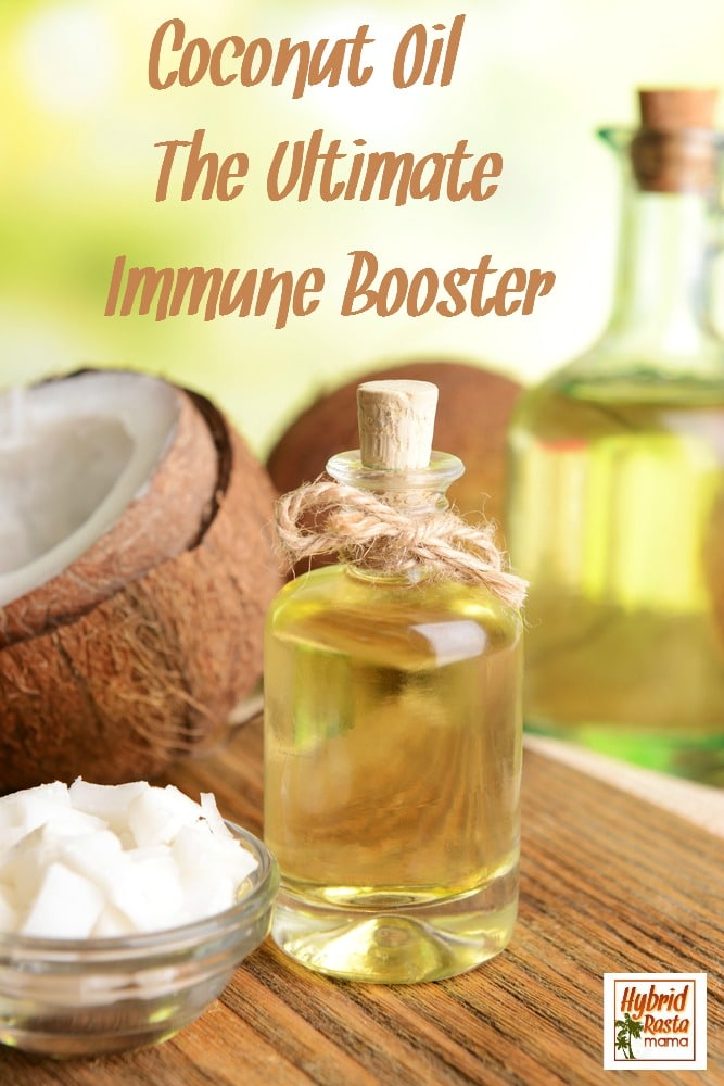 It is hard to know what immune boosting remedies to take. There are gobs of them marketed to us. Good thing coconut oil is the ultimate immune booster! Brought to you by HybridRastaMama.com.