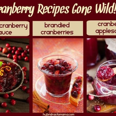 Cranberry Recipes Gone Wild (Cranberry Sauce, Brandied Cranberries, & Cranberry Applesauce)