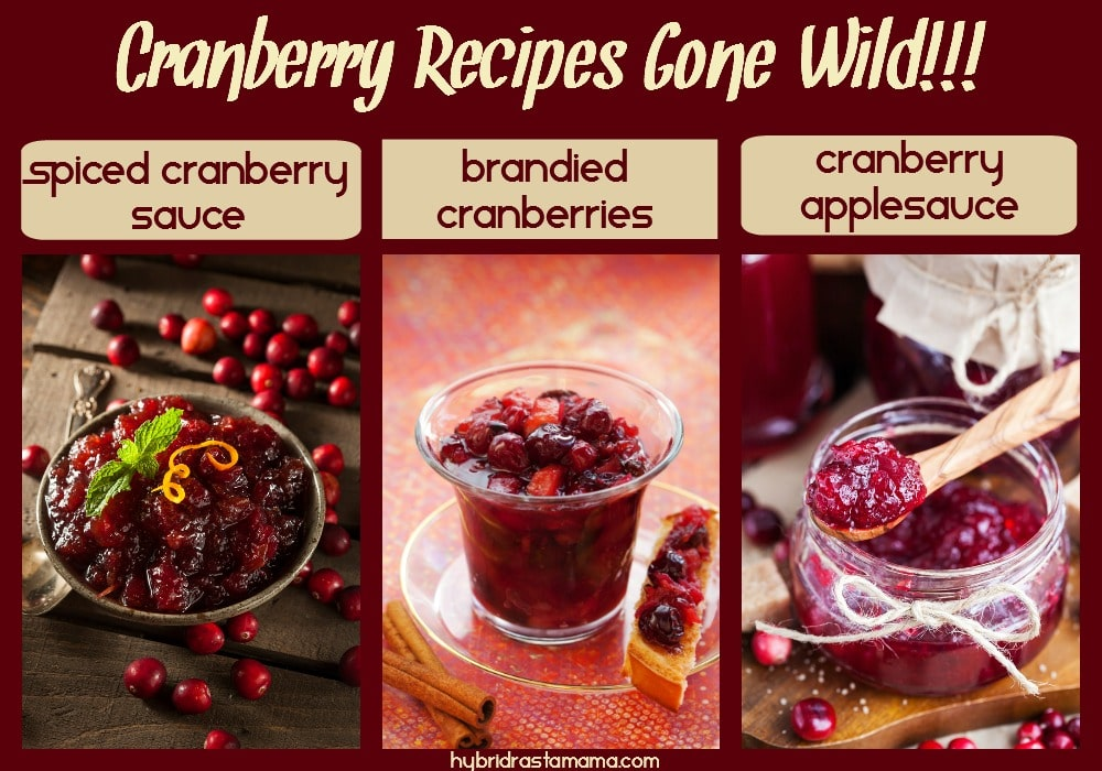 Looking for a twist on some holiday cranberry classics? Then check out Cranberry Recipes Gone Wild! You will discover how to make an awesome Spiced Cranberry Sauce, Brandied Cranberries, and a yummy Cranberry Applesauce. These gluten free, vegan recipes from HybridRastaMama.com will delight every cranberry lover.