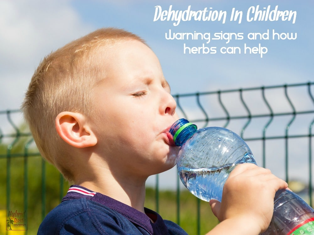 Do you know the warning signs of dehydration in children? It isn't as cut and dry as you think. Get informed and learn how herbs can help bring relief from HybridRastaMama.com
