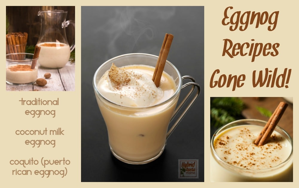 Eggnog recipes including traditional eggnog, Coquito (Puerto Rican eggnog), & dairy free coconut eggnog. These tasty beverages can also be used in baking. From HybridRastaMama.com