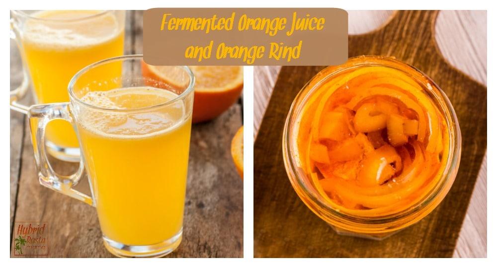 Fermented Orange Rind and Fermented Orange Juice (Two Ways)