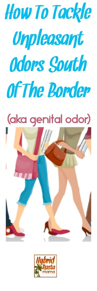 Genital odor got you down? Never fear! I'm here to tell you about why it happens, how to prevent it, and even provide you with a sweet little spritzer recipe to help tackle those unpleasant odors south of the border. From HybridRastaMama.com #odor #odorprevention #feminineodor #womenshealth #naturalhealth #diyodorremover #recipes #skincarerecipe