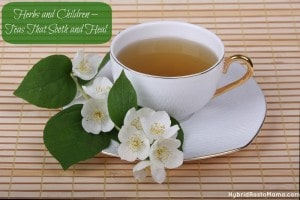 Herbs and Children – Teas That Sooth and Heal: HybridRastaMama.com