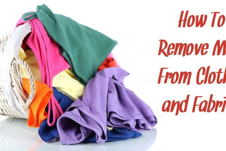 How To Remove Mold From Clothes and Fabrics