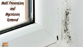 Toxic mold is responsible for many health issues. Keeping your home mold free is vital. Learn my monthly mold prevention and mycotoxin removal routine here. From HybridRastaMama.com