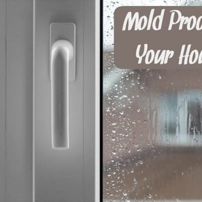 Mold Proofing Your House – A DIY Guide