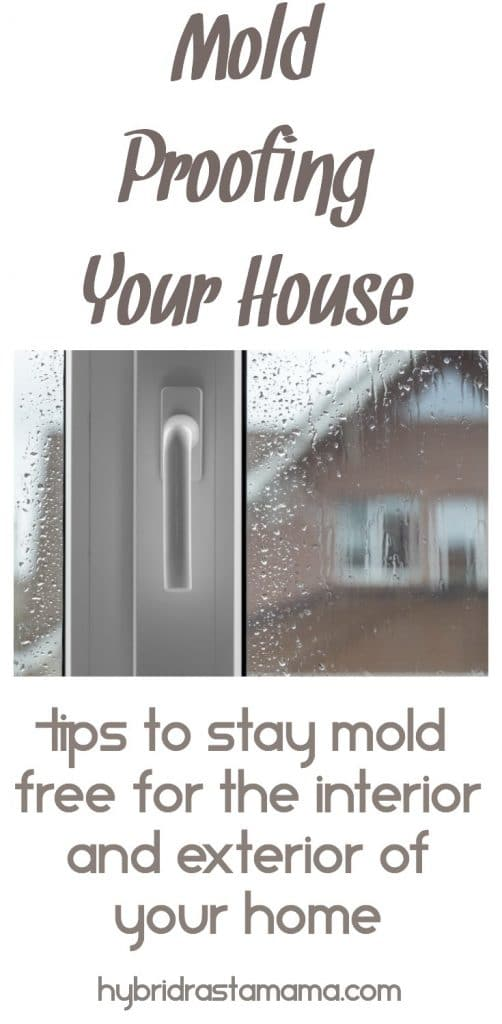Looking out a rainy window at a brown house to mold proofing your house