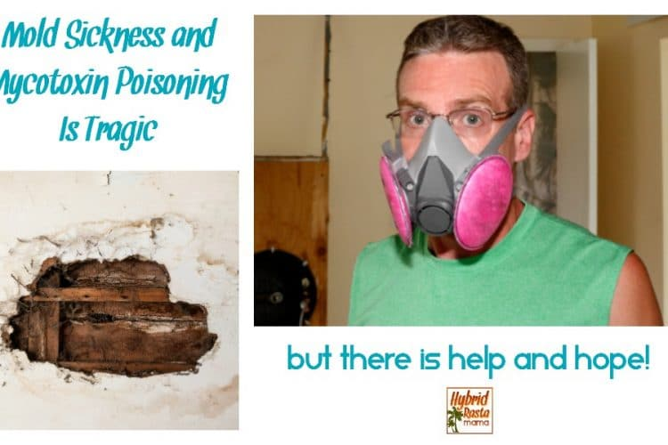 Mold Sickness and Mycotoxin Poisoning Is Tragic – But There Is Help And Hope