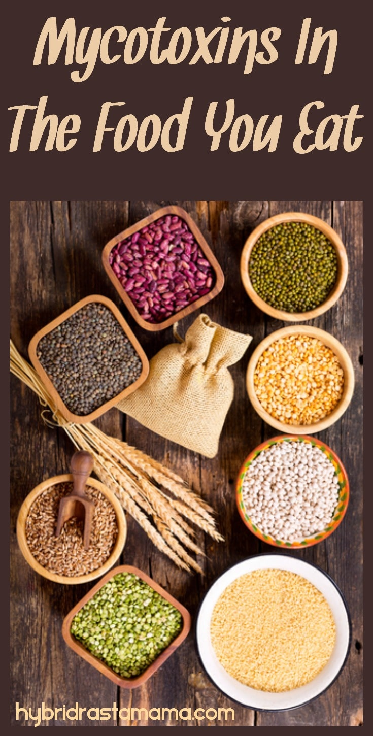 Dried beans and grains in small bowls on wooden background. Mycotoxins in food you eat are portrayed here.