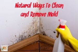 Natural Ways To Clean Mold and Remove Mold