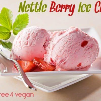 Dairy Free Nettle Berry Ice Cream