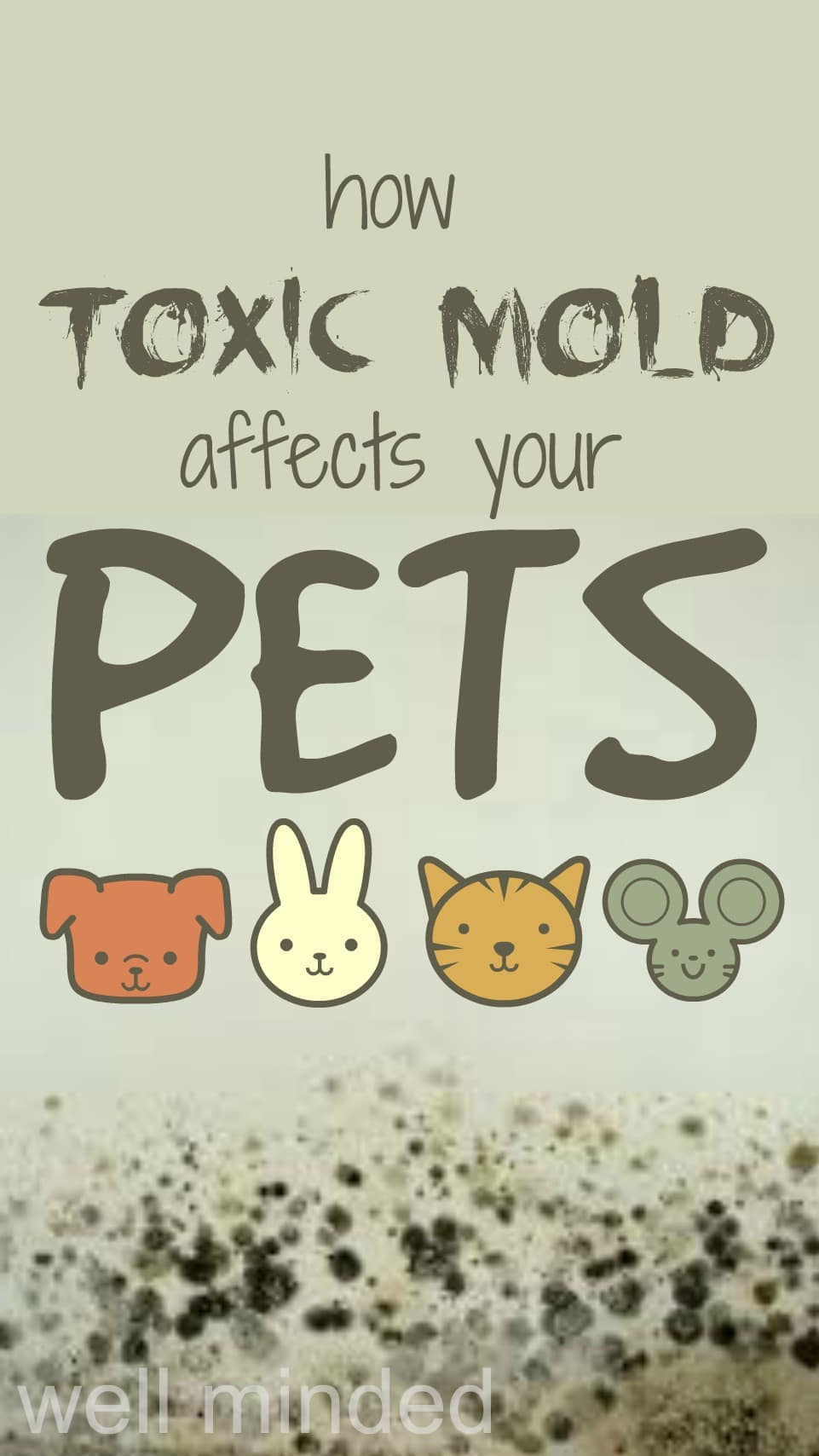 How Toxic Mold Affects Pets By Hybrid Rasta Mama