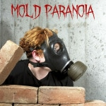 The Fine Line Between Mold Prevention and Mold Paranoia