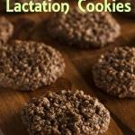 Tigernut Flour Lactation Cookies (Gluten Free, Dairy Free, Egg Free, Nut Free, Soy Free)