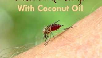 Bug bites and stings got you down? No worries...coconut oil to the rescue! Learn how coconut oil can help with all kinds of bug bites and stings in this post from HybridRastaMama.com.