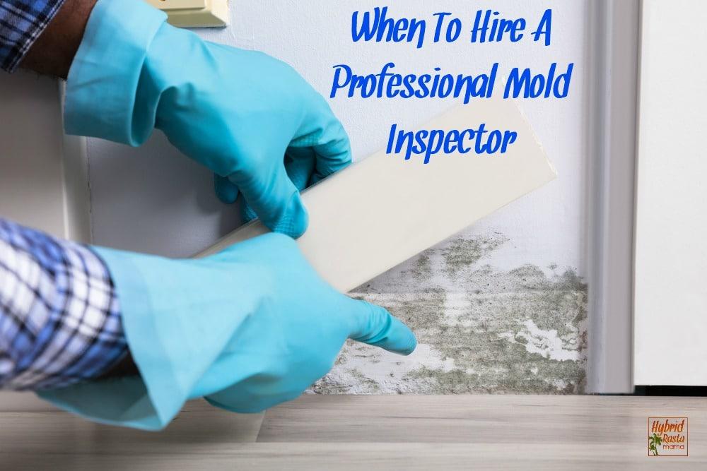 mold inspector taking a moisture reading under a wet baseboard.