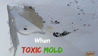 Mold on ceiling from water damage - mold strikes twice